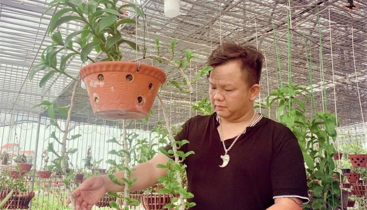 Nguyễn Đăng Ghin