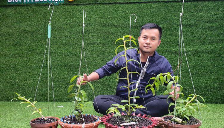 vườn lan Dương Xuân Tú