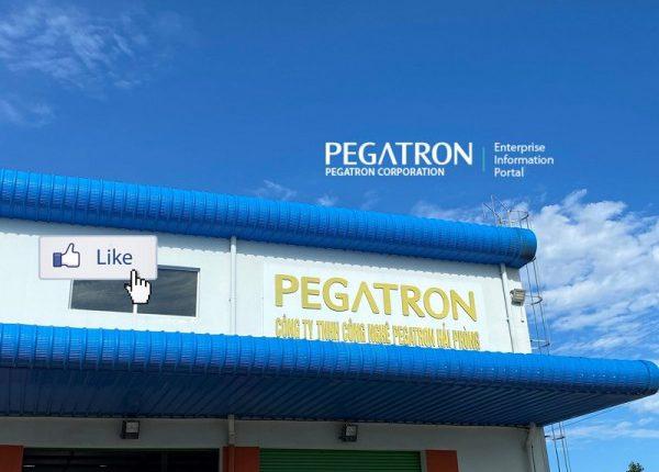 0620_petragon