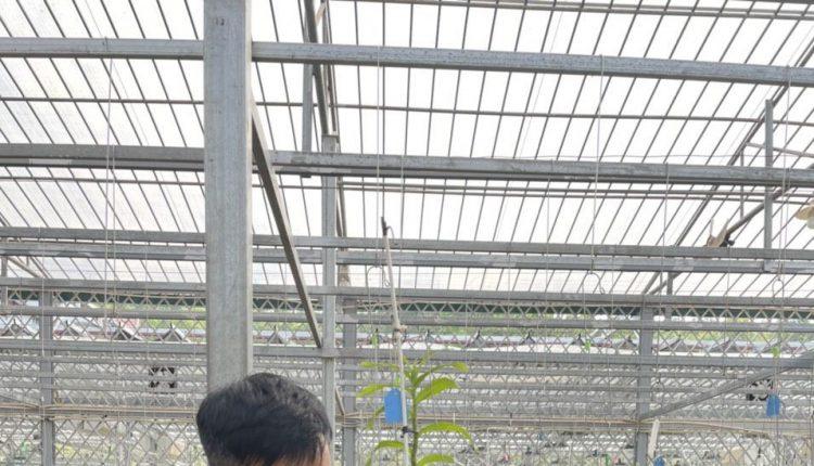 vườn lan Phương Thuần1