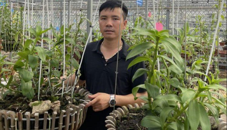 vườn lan Phương Thuần2